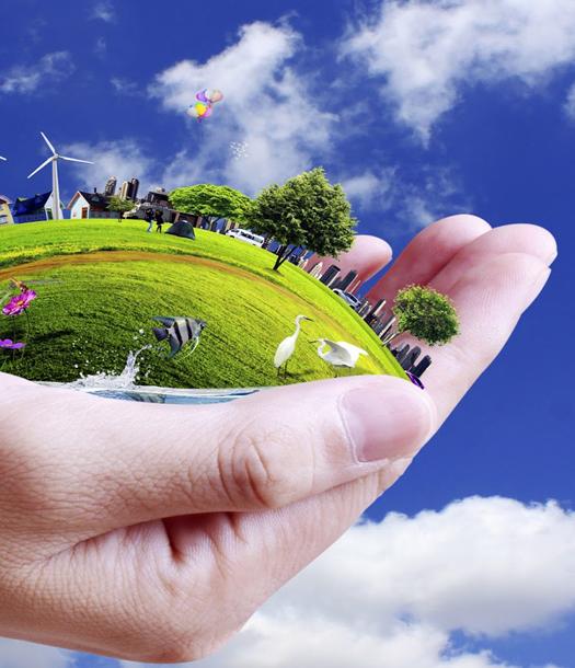 العلاقة بين البيئة والتنمية 4